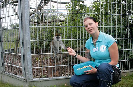Nadine Kohrs, Tierpflegerin, vor einem Außengehege der Grünen Meerkatzen.
