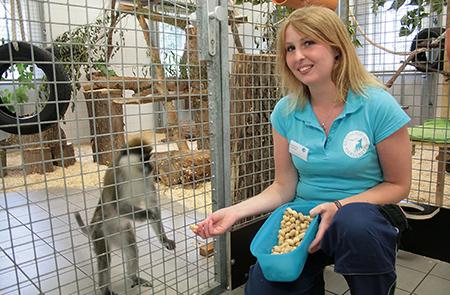 Kerstin Onken, Tierpflegerin, im Affenhaus bei den Grünen Meerkatzen.