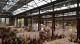 (c) VEBU: Die VeggieWorld in Düsseldorf ist gut besucht
