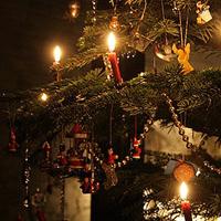 Ein Ausschnitt eines Weihnachtsbaum.