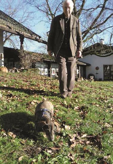 """Arthur Sudau genießt mit Dackel Nicki den weitläufigen Garten. Vor der """"Adoption"""" lebte Nicki auf dem Sonnenhof."""