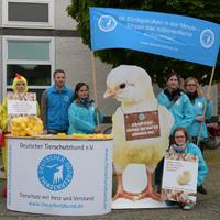 Aktion gegen Kükentötung vor dem Oberverwaltungsgericht Münster.