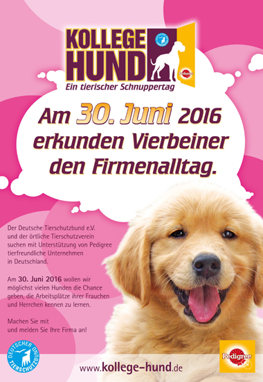 """Plakat zum Aktionstag """"Kollege Hund"""" 2016."""