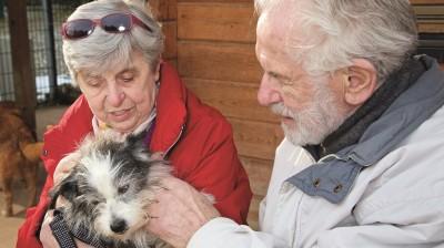 Lucy hat bei diesem älteren Ehepaar ein neues Zuhause gefunden. Im Sonnenhof haben sie die kleine Hündin direkt ins Herz geschlossen.