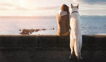 Reisen mit dem Hund. Urlaub - die schönste Zeit.