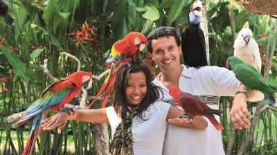 Ein Paar zeigt sich mit exotischen Vögeln.