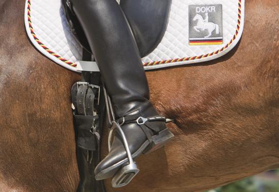 Dieser Reiter übt mit den Sporen starken Druck aus. Es kommt sogar vor, dass Reiter ihre Pferde dabei blutig stechen.