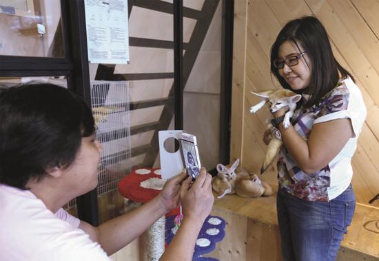 """Ein Mädchen posiert mit einem Wüstenfuchs in einem """"Cafe"""" in Bangkok."""