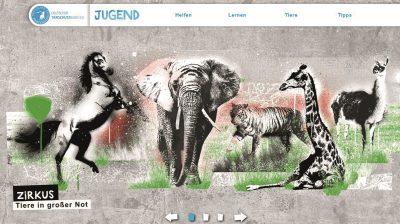 Startseite_Jugendportal_dudt_03_16_beitragsbild