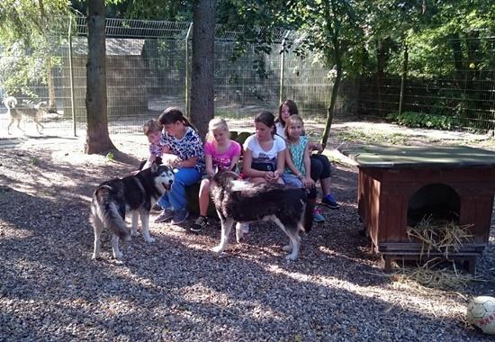 Die Kinder und Jugendlichen genießen die Zeit mit den Hunden.