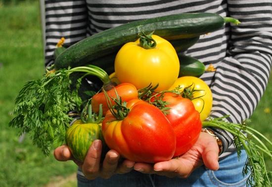 Bei einer abwechslungsreichen veganen oder vegetarischen Ernährung sollten frische, gering verarbeitete Lebensmittel im Mittelpunkt stehen.