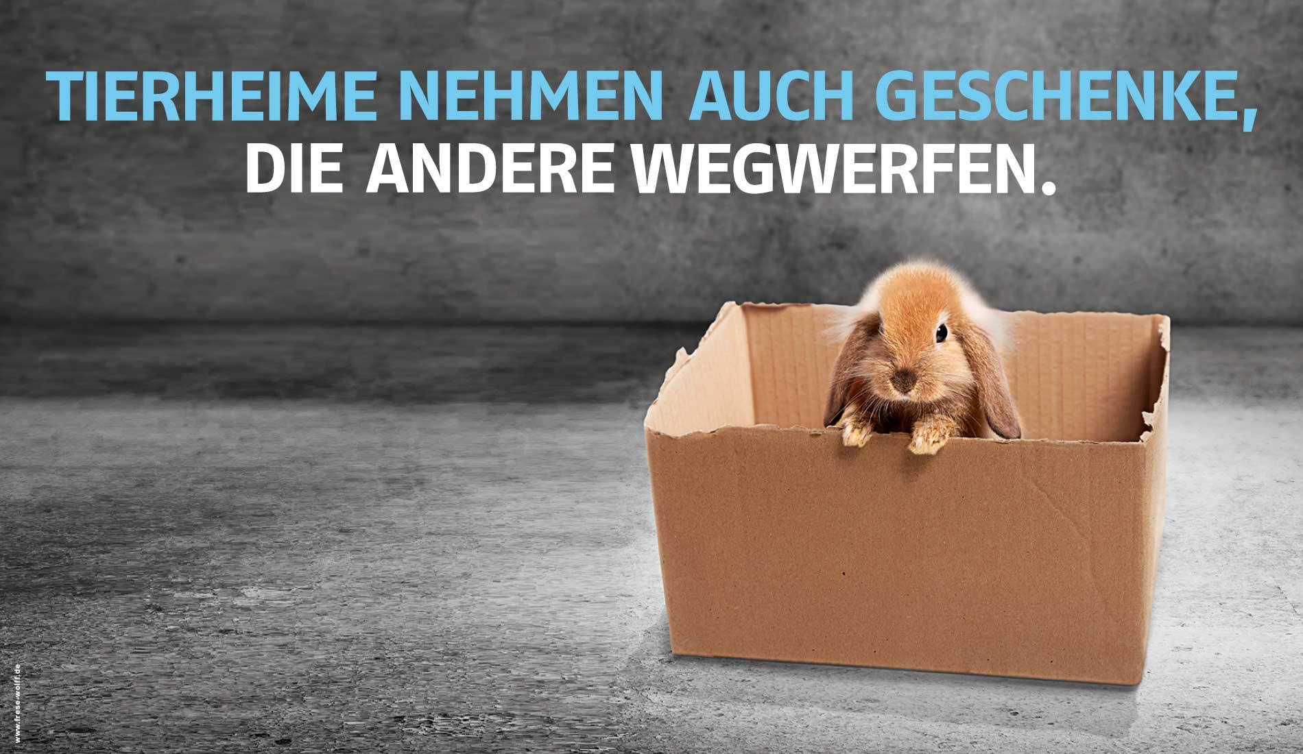 """Ein Motiv der Kampagne """"Tierheime helfen. Heft Tierheimen!"""" des Deutschen Tierschutzbundes."""