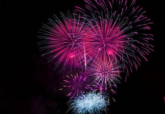 Das laute Feuerwerk löst aber bei vielen Haustieren Todesangst aus.