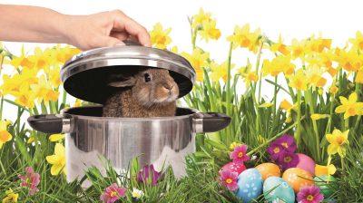Hoffnung, Auferstehung, Neuanfang – dafür steht Ostern. Doch weil Lämmer, Kaninchen und Hühner ein fester Bestandteil unserer Bräuche sind, bedeutet das Fest für sie das Gegenteil.