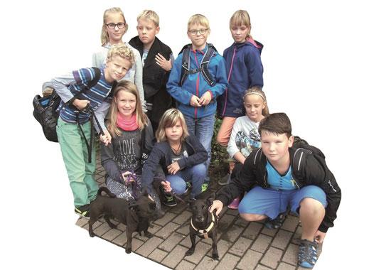 Die Kinder gehen unter anderem mit den Hunden des Tierheims spazieren.