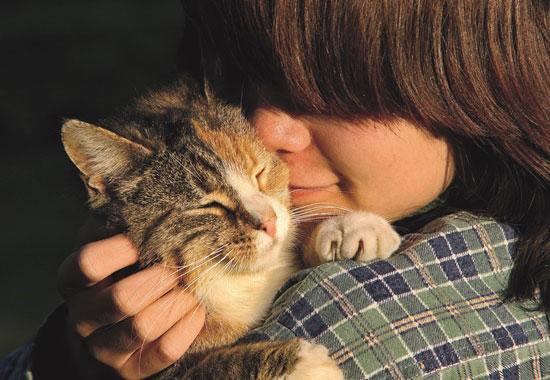 Streicheleinheiten sind wichtig. Wenn die Katze den Tiersitter bereits kennt, fühlt sie sich umso wohler.