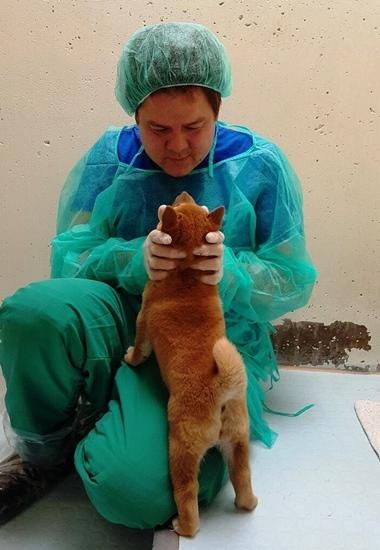 Die Tierschützer kümmern sich derzeit um alle Welpen.