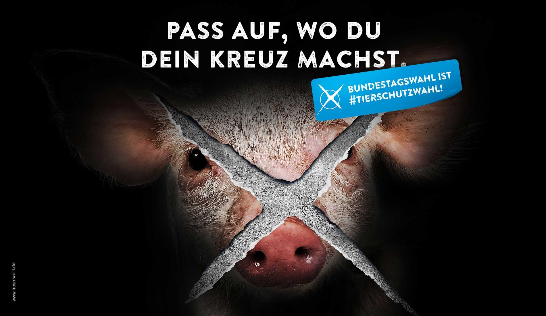 Am 24. September 2017 ist Bundestagswahl und damit Ihre Chance, für den Tierschutz politisch etwas zu bewegen: Ihre Wahlentscheidung legt den Grundstein für den Tierschutz in den nächsten Jahren!