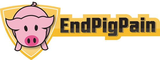 Die Kampagne EndPigPain macht das Leben der Schweine sichtbar.