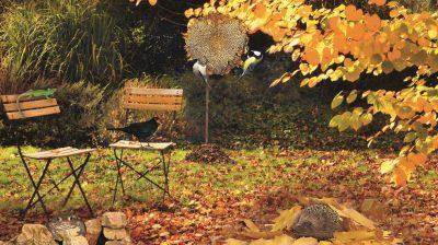 Wenn die Blätter langsam anfangen, sich zu verfärben, ist auch der Winter nicht mehr allzu fern. Zeit, den Garten winterfit zu machen, und zwar so, dass die Tiere auch etwas davon haben.