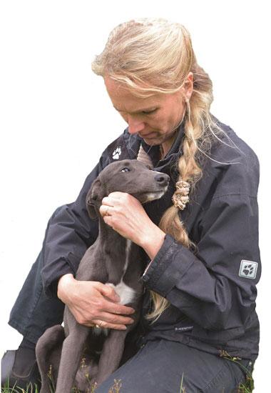 Natascha Wothke, zweite Vorsitzende des Vereins Pro Animale für Tiere in Not, kümmert sich um einen Greyhound.