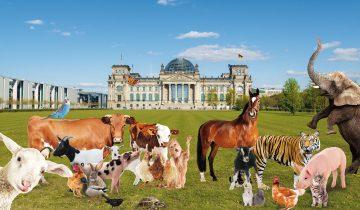 Die Tiere demonstrieren vor dem Bundestag