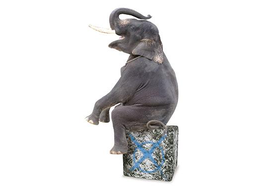 Ein Elefant erhebt seine Stimme für mehr Tierschutz.