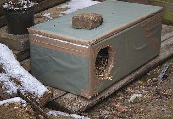 Eine Thermohütte bietet Freigängerkatzen eine Zuflucht vor der Kälte.