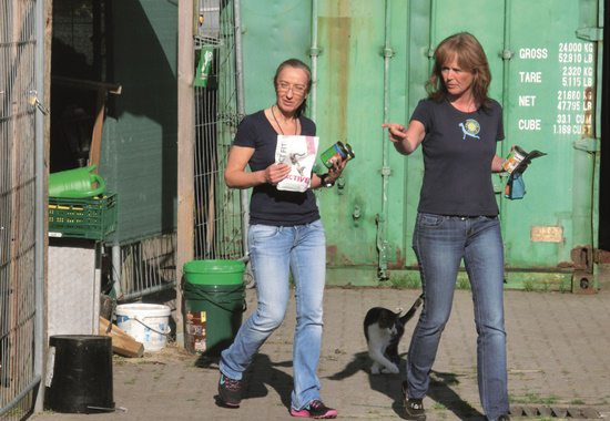 """Beim Engagement der """"Straßentiger Nord"""" stehen herrenlose Katzen im Fokus. Sie kümmern sich liebevoll um die Tiere und klären die Öffentlichkeit über die Problematik auf."""