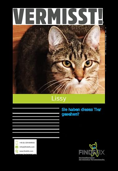 Das über FINDEFIX personalisierte Suchplakat zeigt Katze Lissy.