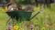 Mit Spaten, Schaufel und Schere fällt im März der Startschuss für die Gartensaison. Damit dieser nicht nur schön aussieht, sondern auch die heimische Tierwelt anzieht, ist die Pflanzenwahl entscheidend.