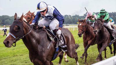 Die Angst ist den Tieren ins Gesicht geschrieben. Mit Peitschenhieben fordern die Jockeys von den Galopprennpferden Höchstleistungen.