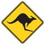 Warnschild vor Kängurus