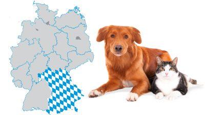 Tierschutz in Bayern