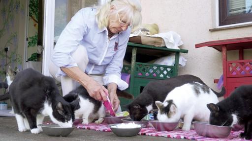 Gudrun Lumpp, Preisträgerin für das Lebenswerk beim Deutschen Tierschutzpreis 2018