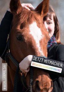 Tiereisches Foto mit Pferd.
