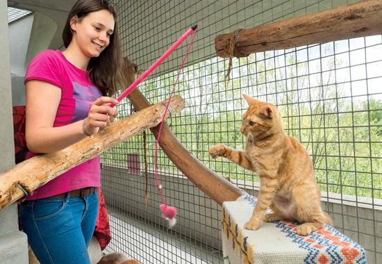Bis zum 31. Mai können sich junge Tierschützer für den Adolf-Hempel-Jugendtierschutzpreis bewerben.