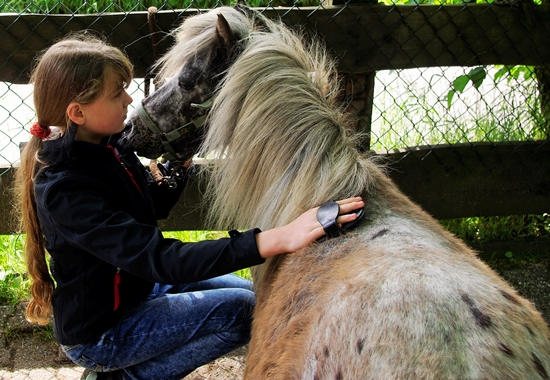 Die Aktivitäten der Tierschutzjugend NRW sind überaus vielfältig.