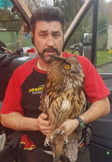 Marcus Barke vom Verein Dogman Tierhilfe