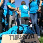 Mitarbeiter des Deutschen Tierschutzbundes demonstrieren in Bonn