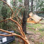 Sturmschäden in Roth