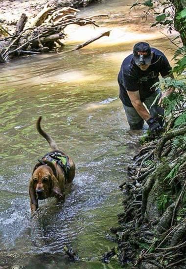 Suche nach einem vermissten Tier führt durchs Wasser